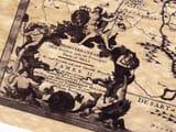 Mediterranean Sanson Detail